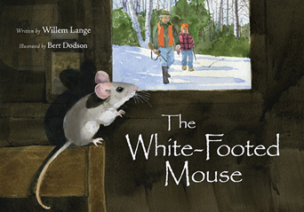 WhiteFootedMouse_342